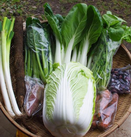 今週の野菜セット(12/15~12/19着)最終回_c0110869_1523569.jpg