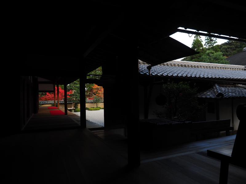 紅葉2015   一休寺                     _f0021869_1121740.jpg