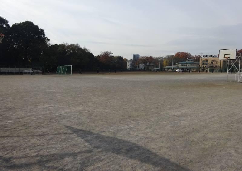 野球ボールが飛んでくる苦情対応_f0059673_20591576.jpg