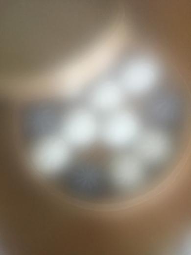 d0179848_11031648.jpg