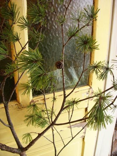 クリスマスからお正月へ。。。_a0229658_18292925.jpg