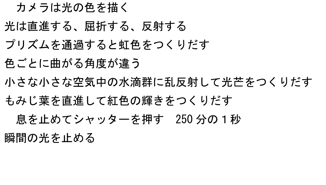 e0304485_23353476.jpg