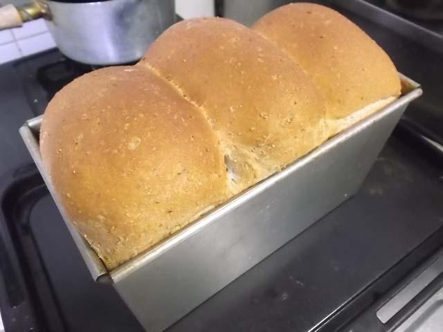 ライ麦山型パン焼きたて~_f0019498_19513311.jpg