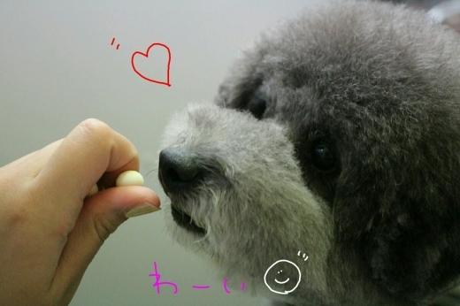 b0130018_23193946.jpg