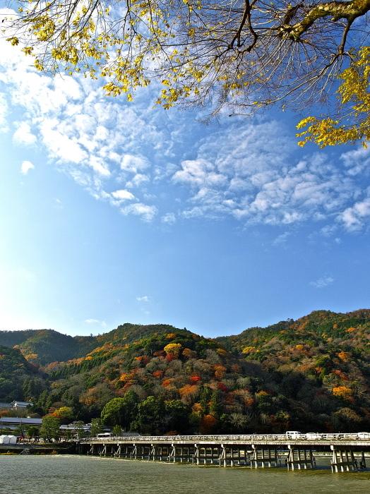 嵐山の紅葉_f0315034_15214421.jpg