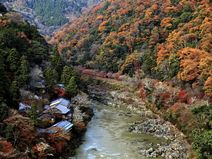 嵐山の紅葉_f0315034_15441349.jpg