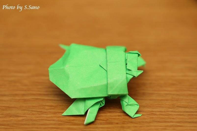 折り紙ゲンゴロウ_b0348205_21075034.jpg