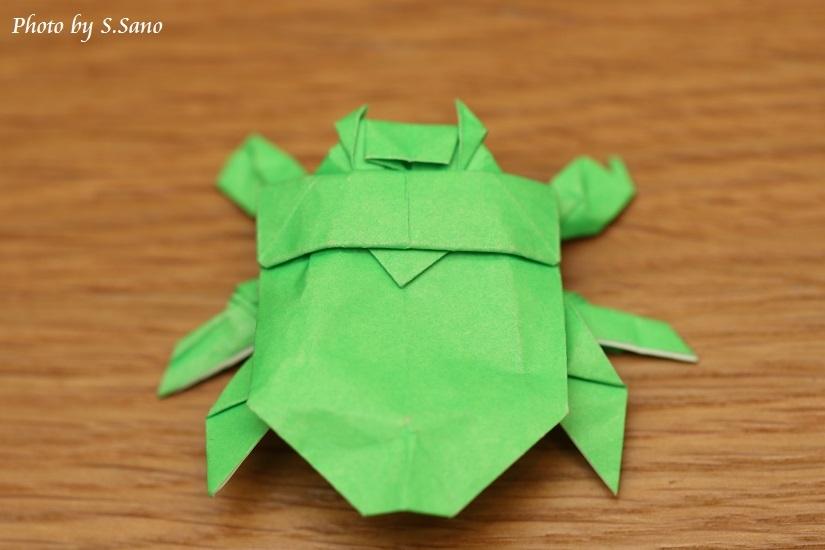 折り紙ゲンゴロウ_b0348205_21080617.jpg