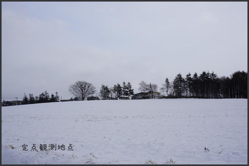 札幌積雪ゼロから一転_b0019313_17284231.jpg
