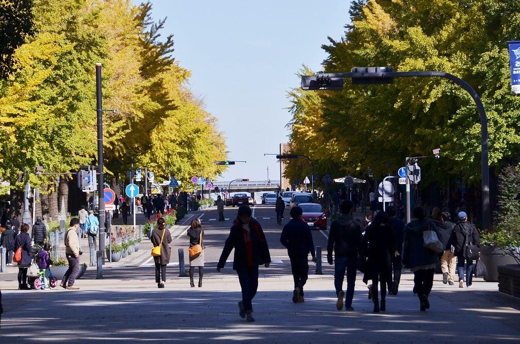 日本大通り ハッピーイエロー_d0065116_215734.jpg
