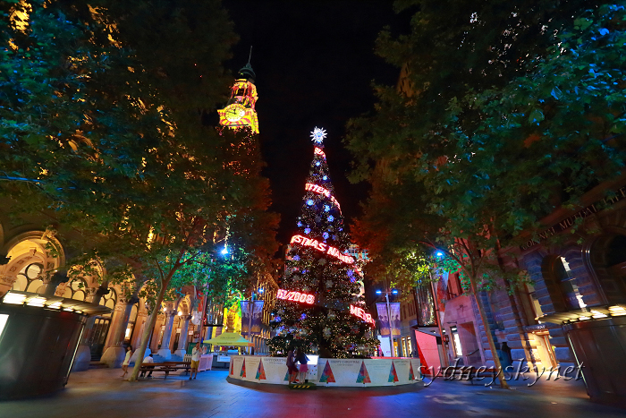 Christmas illumination ~2~ Martin Place_f0084337_20331112.jpg