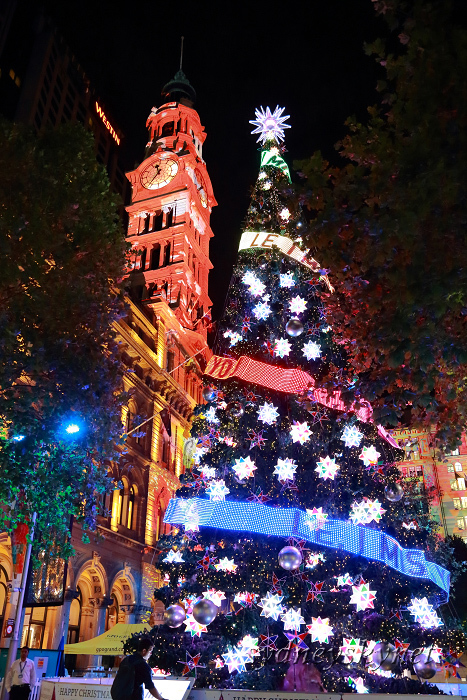 Christmas illumination ~2~ Martin Place_f0084337_20331126.jpg