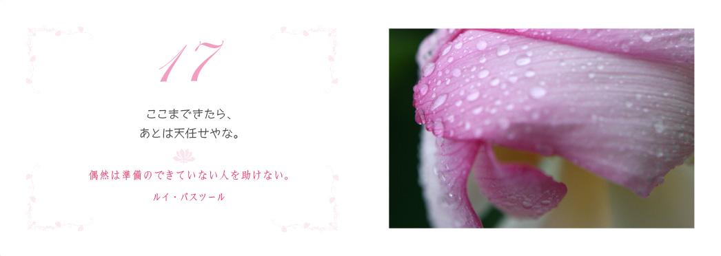 f0355165_10384342.jpg