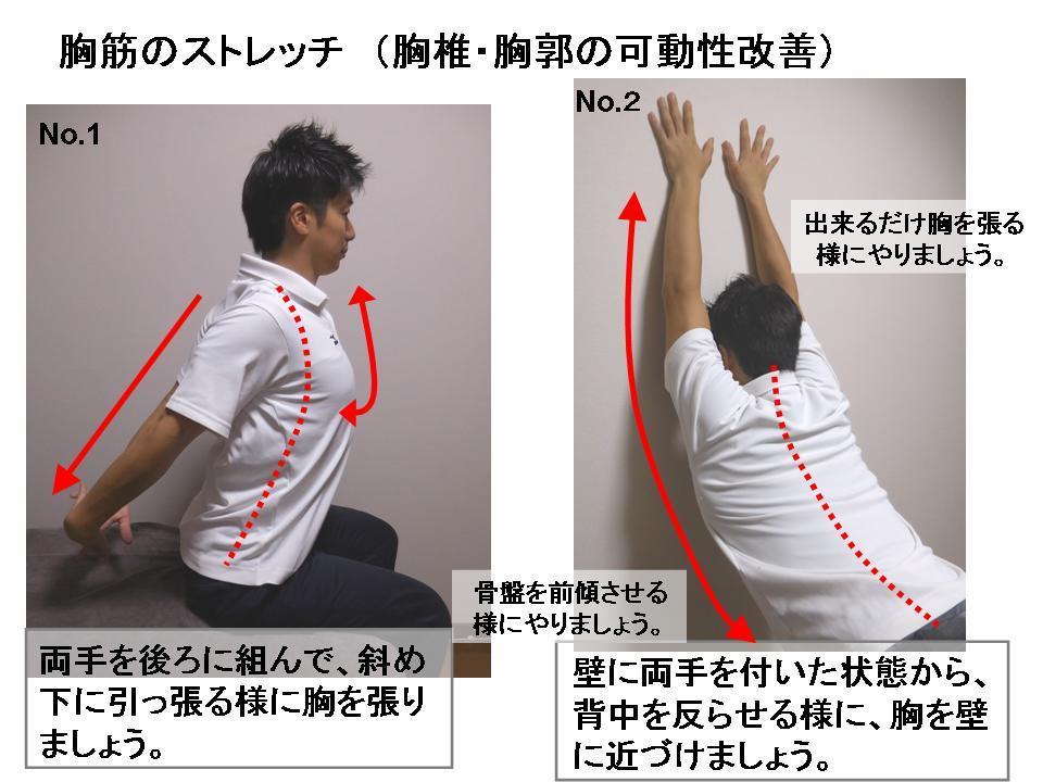 「胸郭拡大 ストレッチ」の画像検索結果