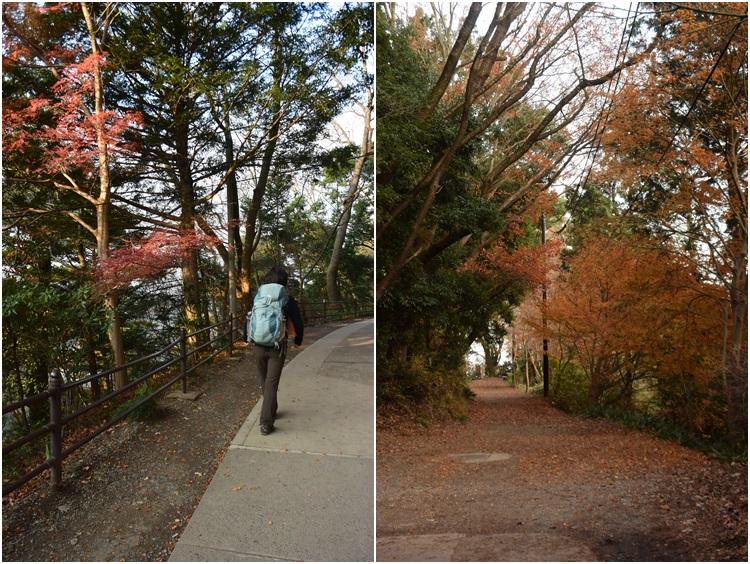 高尾山で鍋 2015_c0124100_053885.jpg