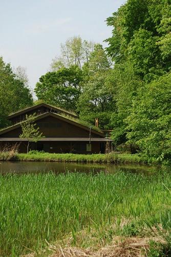 緑がいきいき…緑の森博物館 2013.05_c0124100_1134518.jpg