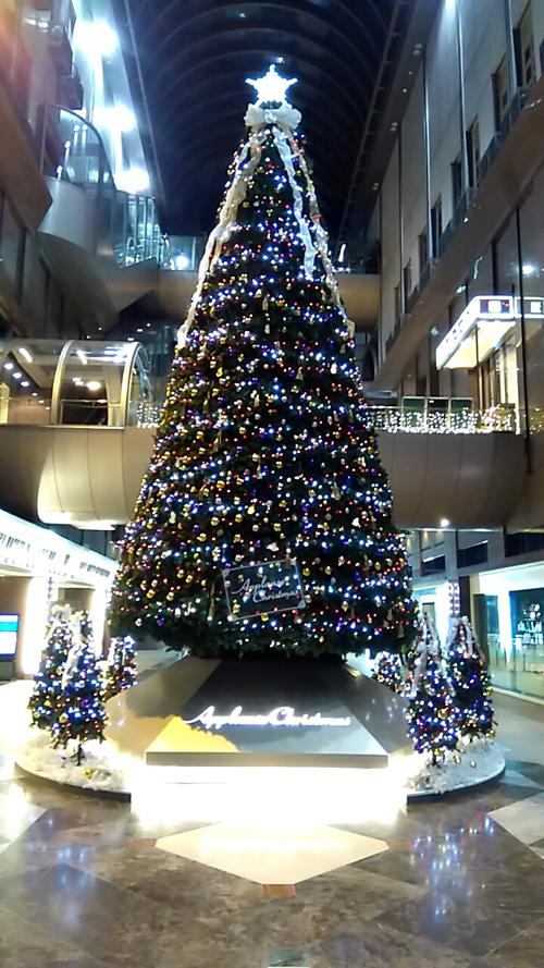 Merry Christmas!_e0069308_18415546.jpg