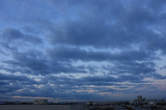 波状雲 (層積雲)_b0268615_8131195.jpg