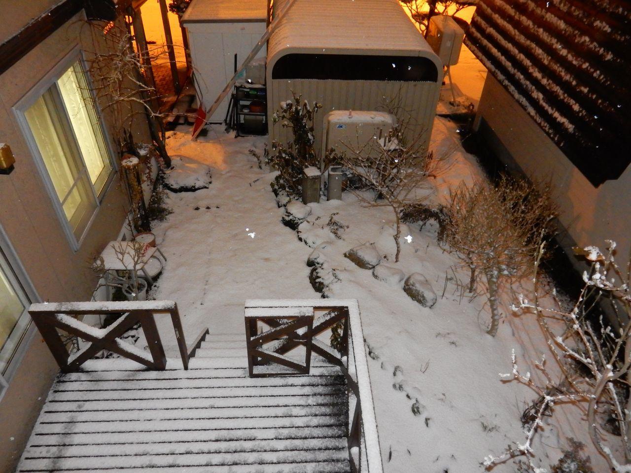 降雪ほどには積もらない_c0025115_16421082.jpg