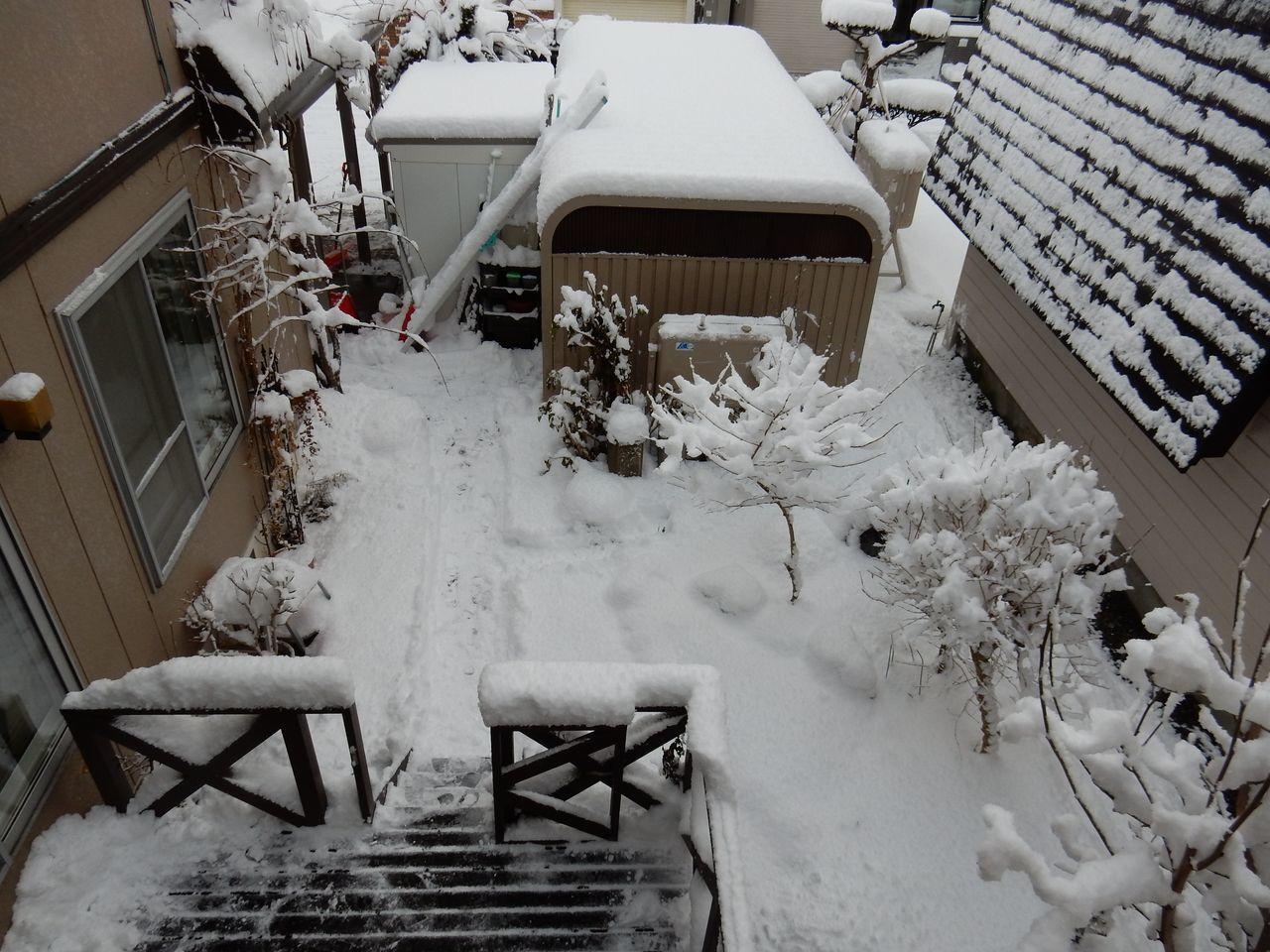 降雪ほどには積もらない_c0025115_16474958.jpg