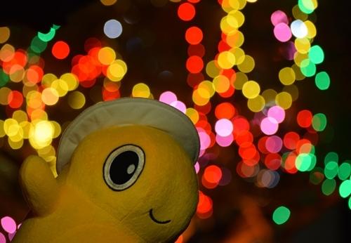 Merry ChristmasなNODA♪_c0259934_09370101.jpg