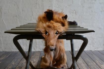 Fox muffler with face_f0226051_144724.jpg