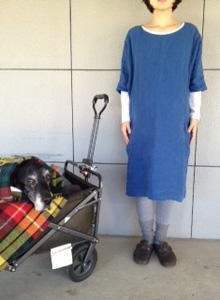 ヤンマ産業さんの服が入荷いたしました!_e0199564_16423873.jpg