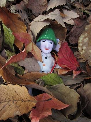 ノッポさん ひとり旅 12月の森にて_a0099166_21383812.jpg