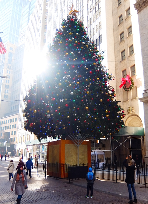 NYウォール街、証券取引所前のクリスマス・ツリー2015_b0007805_10375939.jpg