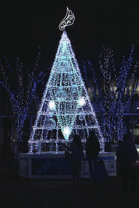 さいたま新都心  クリスマス・イルミネーション_d0150720_19101027.jpg