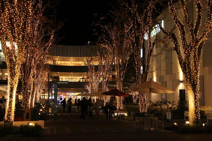 さいたま新都心  クリスマス・イルミネーション_d0150720_19135358.jpg