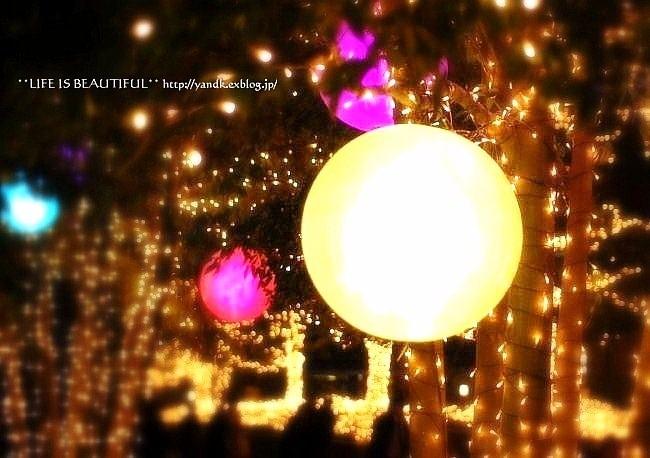 Christmas Illumination☆2015_d0083623_1102163.jpg