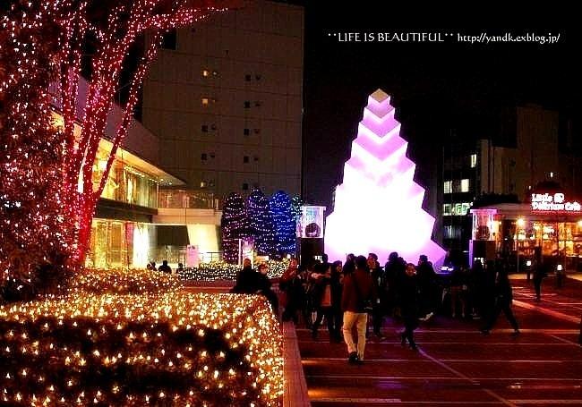 Christmas Illumination☆2015_d0083623_110344.jpg