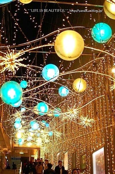 Christmas Illumination☆2015_d0083623_115207.jpg