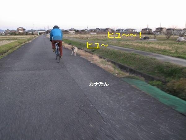 f0143123_20035408.jpg