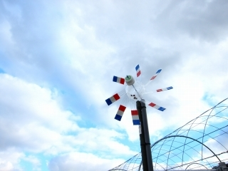 トリコロールの風車_d0336530_21340212.jpg