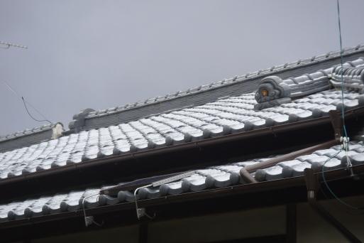 雪景色になりました。_e0226943_23261448.jpg