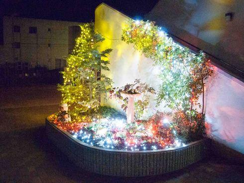 クリスマスイルミネーション_e0209845_2285829.jpg