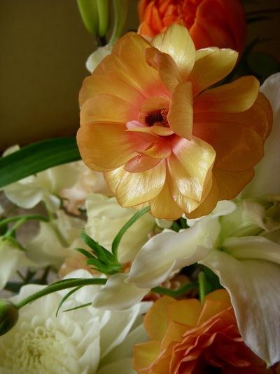 ご注文のお花たち 。。。_a0229658_21235482.jpg