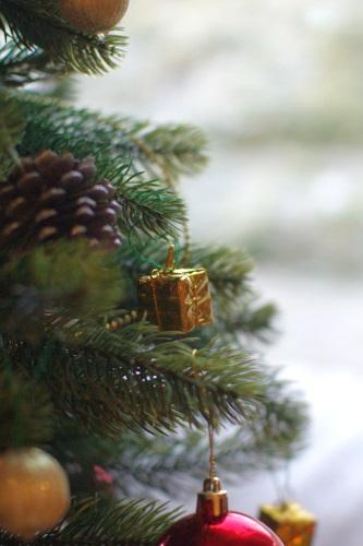 クリスマスツリーにお菓子を飾る_c0110869_15361852.jpg