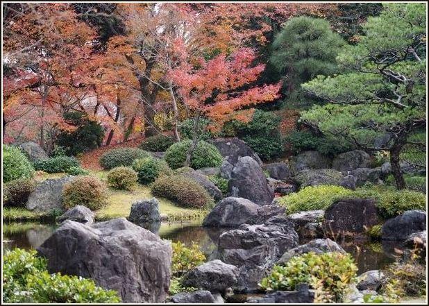 2015年 京都紅葉ラスト_c0228386_1655357.jpg