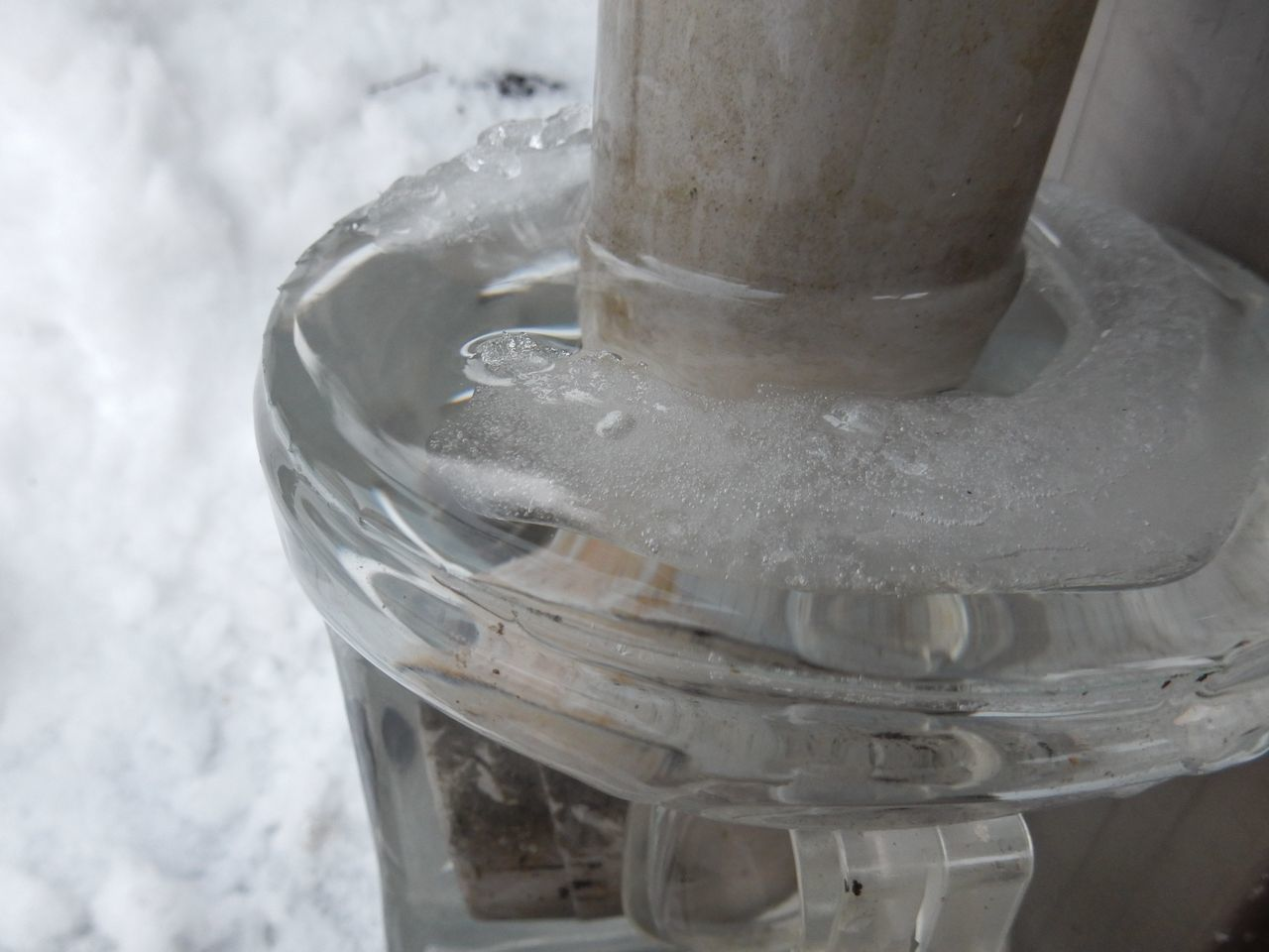 暖冬はこのまま続くのか_c0025115_21052585.jpg