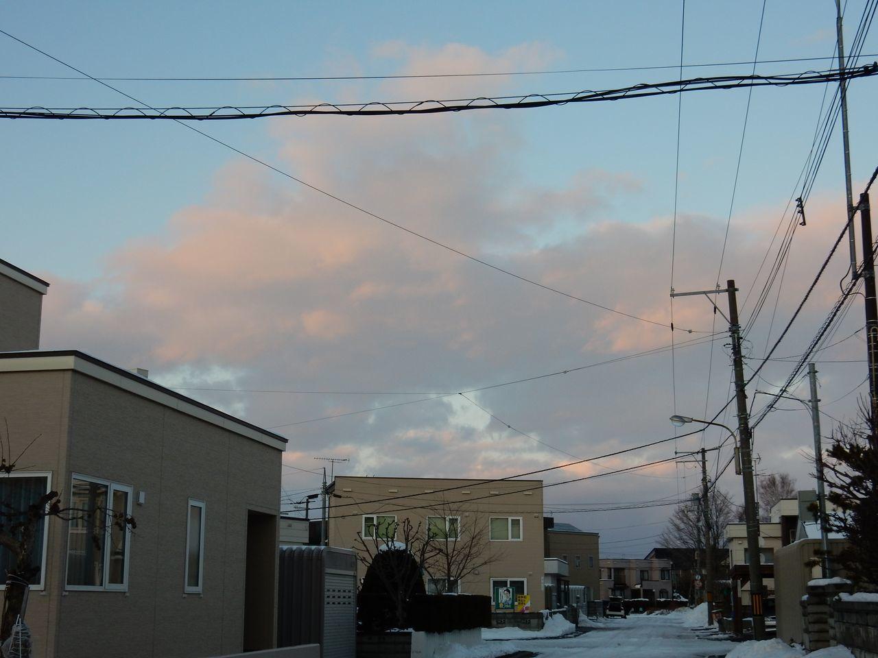 暖冬はこのまま続くのか_c0025115_21090330.jpg