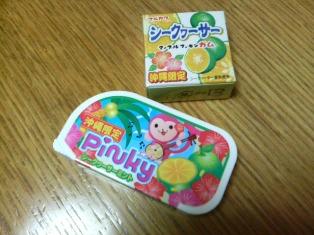 沖縄に行きたい_d0353129_03162569.jpg