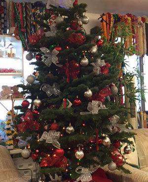 先週と今週の出来事 クリスマスシーズン~_c0196240_03325342.jpg