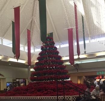 先週と今週の出来事 クリスマスシーズン~_c0196240_04184422.jpg