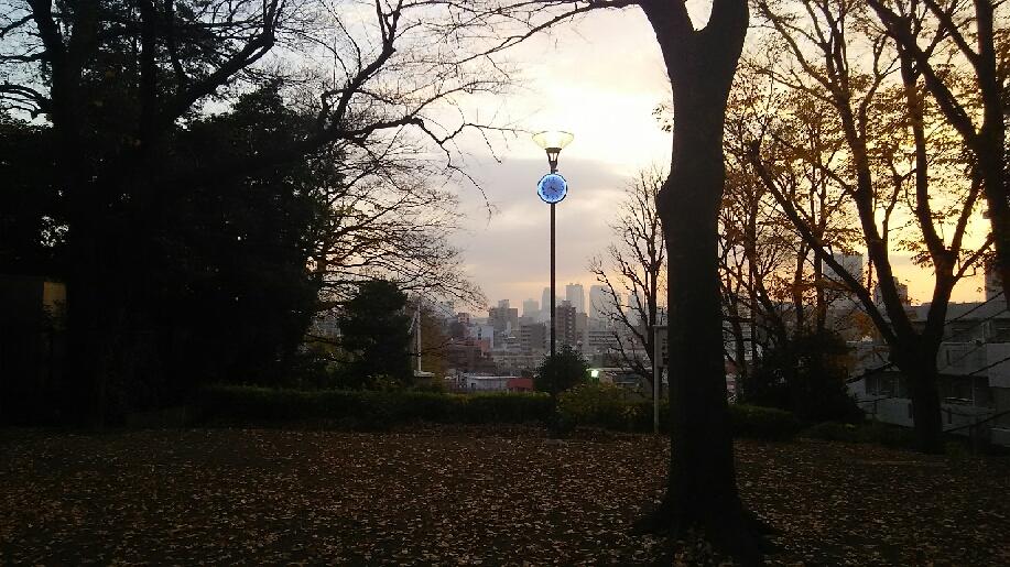 冬の公園_e0083359_10251254.jpg