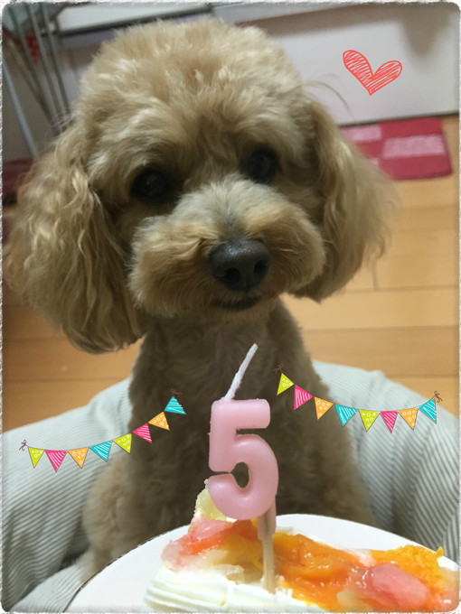 happy cake☆_f0203164_1536381.jpg