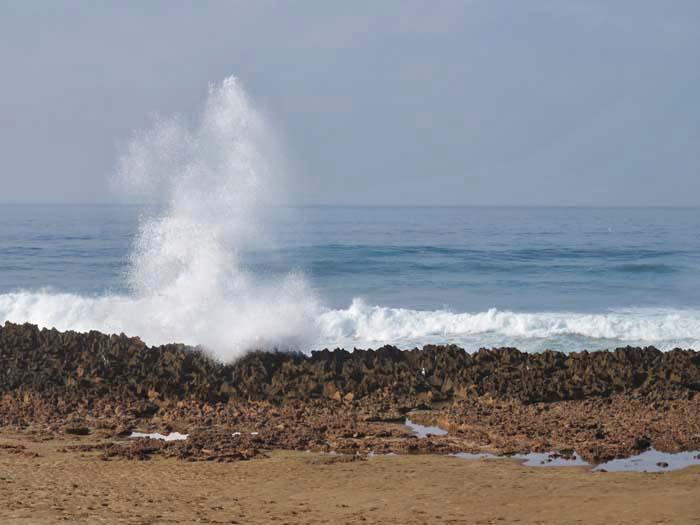のんびり海を眺めて_e0092286_1243536.jpg