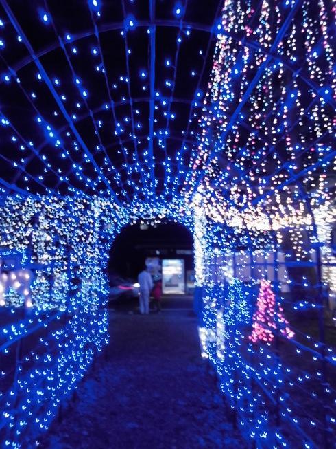 東逗子のクリスマス_e0190287_1239728.jpg